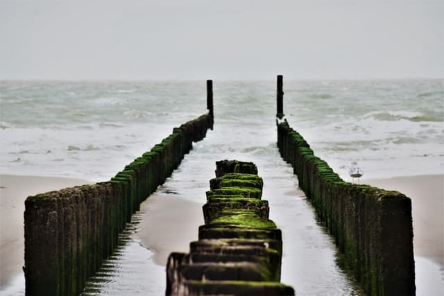 Strandhuisje Zeeland huren